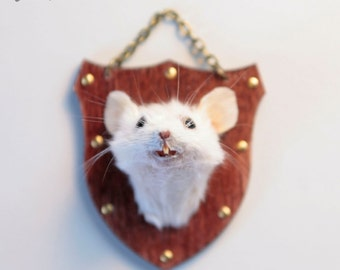 Taxidermy Mouse Wood Head Mount