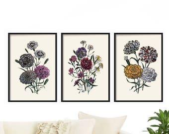 Botanical Print Set of 3 - Vintage Prints - Illustration - Botanical Illustration - Farmhouse Decor - Rustic Decor - Farmhouse Prints Decor