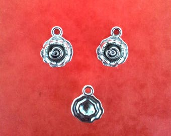 Set of 10 charms - silver T35