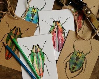 Beetle Postcards