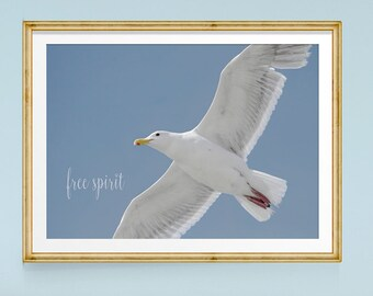 Inspirational Art, Bird Print, Seagull, Inspirational Quote, Large Wall Art, Bird Art Print, Flying Birds, Blue and White Art, Nature Photos