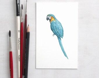 Macaw Parrot Original Watercolor Painting, original art