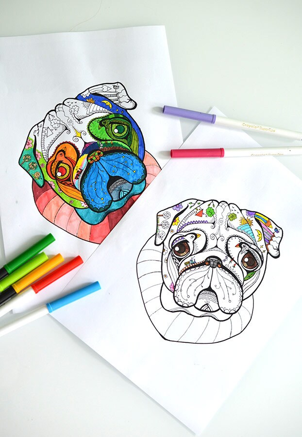 Digital coloring page with Pug. Printable coloring book page