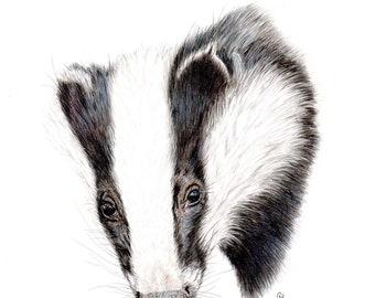 Badger Fine Art Print of my original artwork, Nature Print, Animal Print, Nature Wildlife Print, Wall Art Gift for Him or Gift for Her