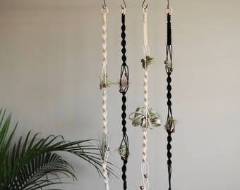 MEARA - Air Plant Holder - Air Plant Hanger - Airplant Holder - Macrame Plant Hanger - Hanging Airplant Accessory - Modern Macrame
