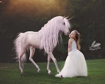 Everleigh Fairytale Princess, Custom Made Tulle Tutu Skirt, Flower Girl Skirt, Wedding Skirt, Floor Length Skirt, Little Girls Tulle Skirt
