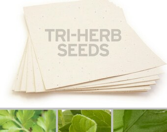 "10 Cream Sheets of Tri-Herb Plantable Seed Paper - 8.5 x 11"" - 85lb - Handmade - Basil, Parsley, Oregano - Crafting"