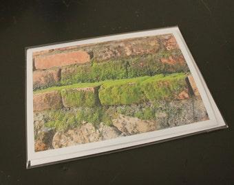"Blank Photo Greeting Card, 7"" x 5"", 'Moss Bricks'"