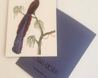 Greeting Card, Bird of Paradise, Arfak
