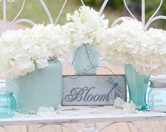 Hydrangeas Floral Print, White Hydrangea Flowers Mason Jars Print, Summer Garden Hydrangea Print, Shabby Chic Decor, Hydrangea Flower Prints