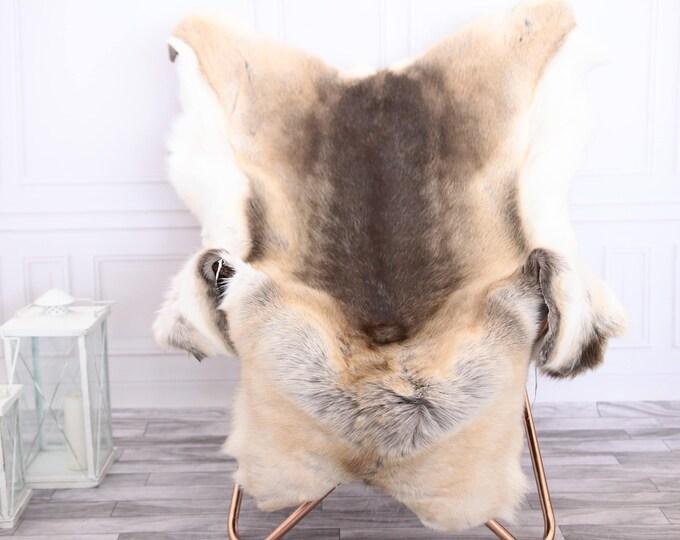 Reindeer Hide | Reindeer Rug | Reindeer Skin | Throw XXL EXTRA LARGE - Scandinavian Style #0RE3