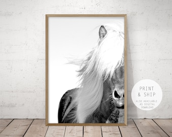 horse print, large printable wall art, large horse poster, print & ship, black and white horse photo