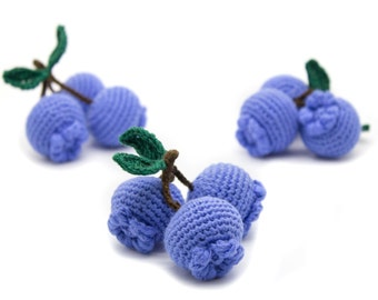 1 Pcs - Crochet blueberry, teething toy, play food, kitchen decoration, eco-friendly Baby toys (6m+) - MiniMom's -