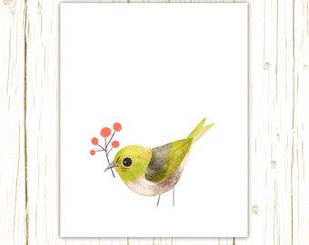 Silvereye Print -- bird art -- colorful bird art by stephanie fizer coleman illustration