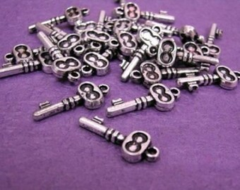48pc antique silver look acrylic key charms-487X2