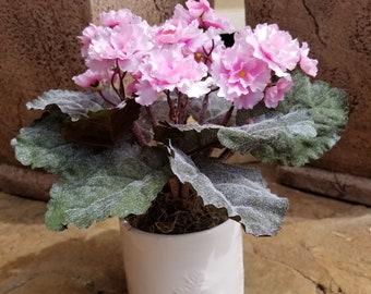 Pink African Violets,Table Arrangement, Spring Floral Arrangements, Mothers Day Gift, Kitchen Decor, Floral Arrangement for table,