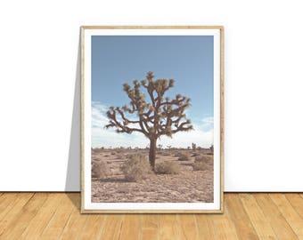Joshua Tree Photography Wall Art Print, Joshua Tree Poster, Joshua Tree Printable Art Digital Download, Desert Photography Print, jt2c2c1