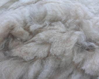 Raw Alpaca Fleece - Beige
