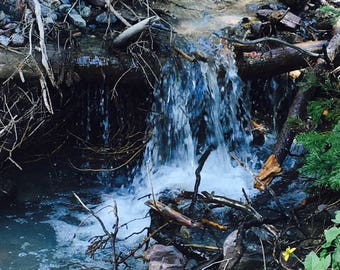 Rocky Mountain Stream #2