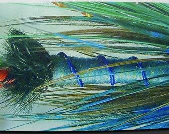 Total Domination Steelhead Fly Macro Canvas Print