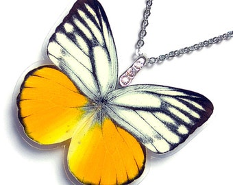 Real Butterfly Wing Necklace / Pendant (WHOLE Cepora Aspasia Butterfly - W109)