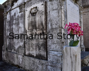Pink Flowers on a Tomb