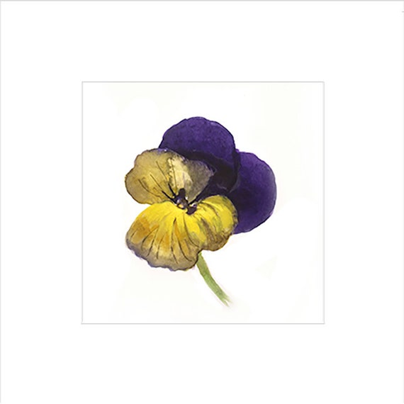 Watercolor flower painting-Johnny Jump-up- original by Gretchen Kelly