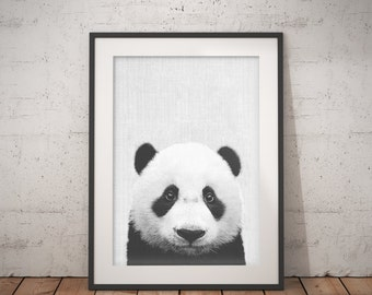 Panda Print, Panda Bear, Panda Wall Decor, Panda Photo, Black And White Animal Print, Nursery Prints, Printable Kids Gift, Instant Download