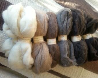 Navajo Churro Wool Roving, Homegrown Natural Colors 4 oz.
