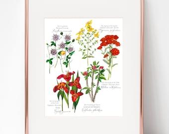 Sorrowful Mysteries Botanical Rosary print