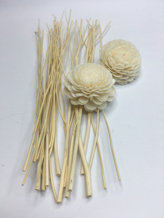 Wood Diffuser Sticks Twigs 21 Cm 8 2 In With Sola