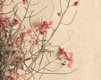 25% Memorial Day Sale wild flowers floral bathroom decor nature print home decor