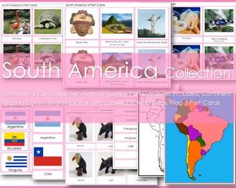 Montessori SOUTH AMERICA Continent Collection