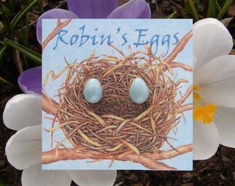 Robin's Egg Earrings