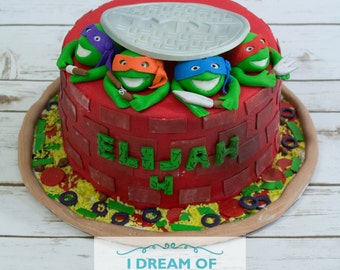 Teenage Mutant Ninja Turtle Cake Kit from ChristyMaries83 on Etsy Studio