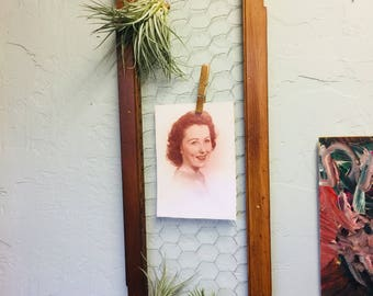 Photo holder, Picture and airplant display made from repurposed wooden shutter/ blindes and chicken wire.