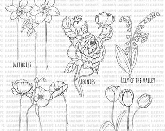 Digital stamp- Flowers set .peonies. deffodils.poppies.lily of the valley. tulips. digi stamp. LiaStampz