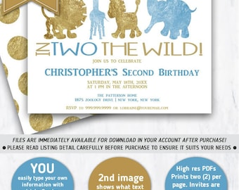2nd birthday invite etsy boys 2nd birthday birthday invitation second birthday in two the wildprintable invitation stopboris Gallery