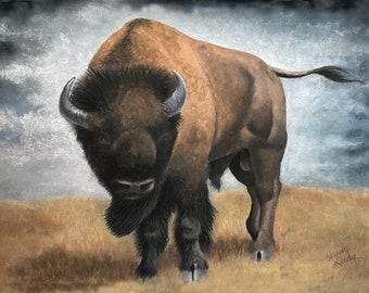Buffalo Sentinel