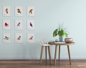 Bird Art Prints- Colorful - Art Prints - Choose Nine