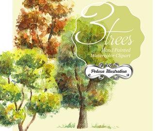 Three Handmade Watercolour Trees - Pelusa Illustration -