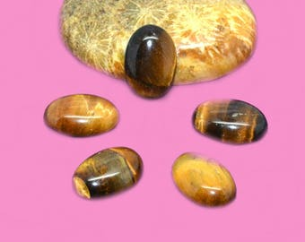 Cabochon gemstone 14 x 10 Tiger eye