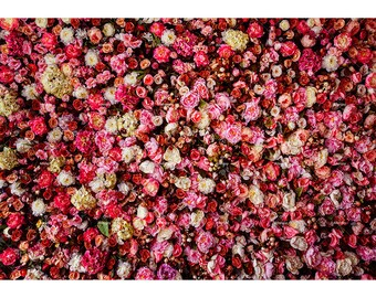Wedding Floral Rose Photography Backdrops Flowers Wall Decoration Bridal  Shower Valentineu0027s Day Photo Booth Background,