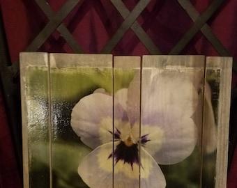 Purple pansy wood art