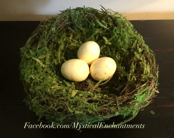 Mossy Spring Birds nest with bird eggs- 5 1/2""
