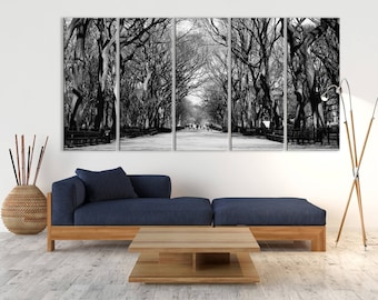 Extra Large Wall Art Landscape Canvas Print   Beautiful Big Bare Trees  Canvas Print, Interior