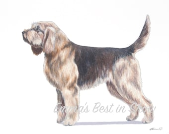 Otterhound Dog - Archival Fine Art Print - AKC Best in Show Champion - Breed Standard - Hound Group - As Seen in AKC Family Dog