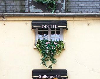 Paris Photography,  Windows at Odette, Paris Pastry Shop, Fine Art Travel Photograph, Paris Decor, Large Wall Art
