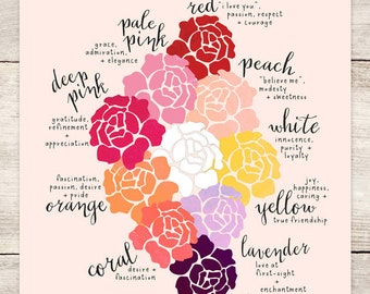 PRINT: Color Guide to Roses, Meaning of Roses