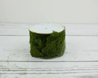 """Fairy Garden Artificial Moss Roll 3"""" Wide"""
